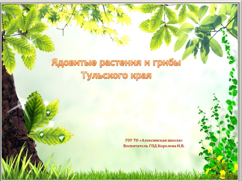 thumbnail of Королева И.В._Ядовитые растения и грибы Тульского края_дошк. гр.