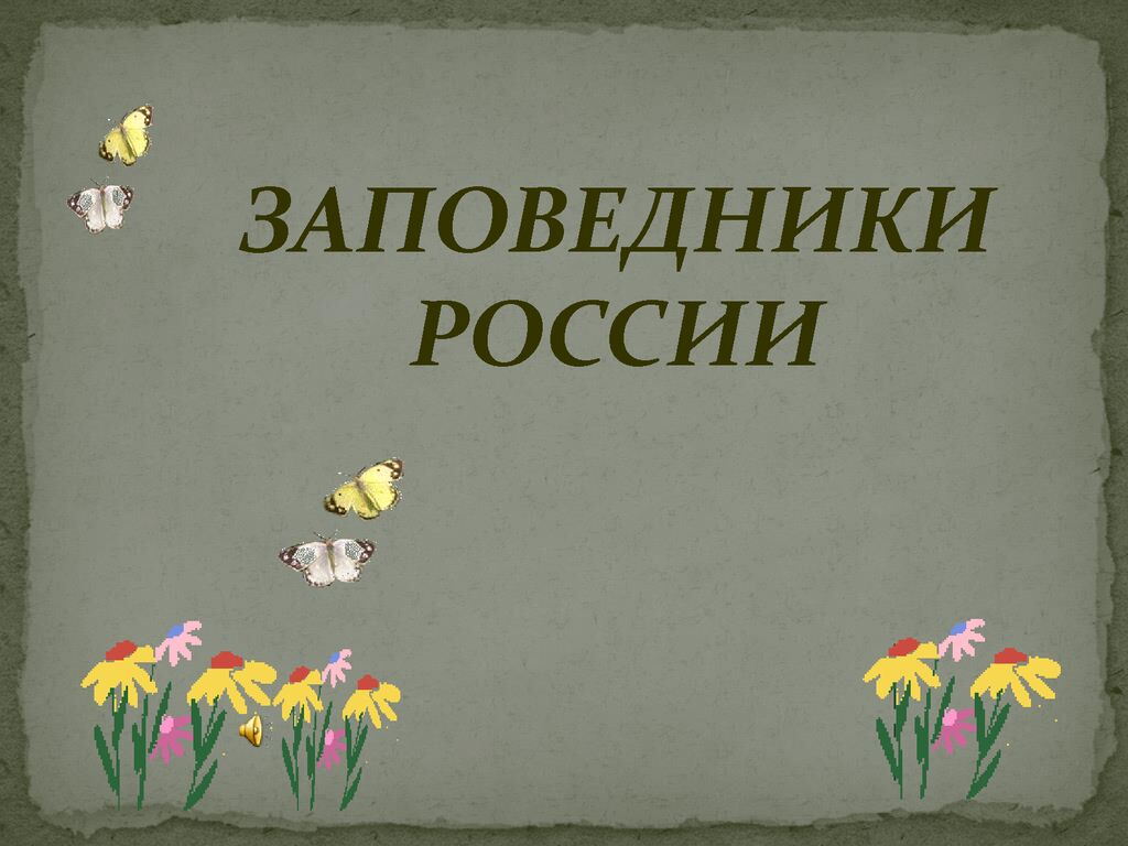 thumbnail of Скоропупова-Н.К._Кл.-час-Заповедники_2-а-кл.